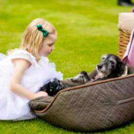 A flower girl patting a dog and wearing a white flower girl dress with a ruffle v neck collar and a full tulle flower girl skirt. These flower girl dresses are handmade to measure in London, UK.